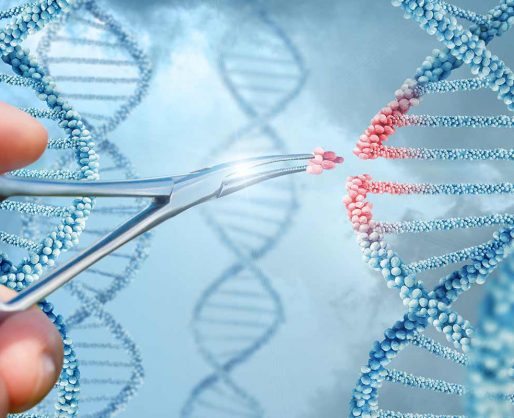 Photo de l'article CRISPR, Futur de l'alimentation